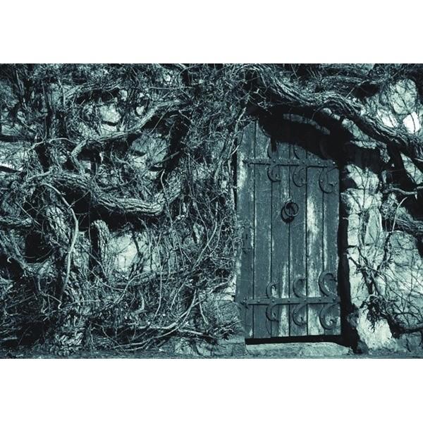 Fotomural DOOR OF PAST FT-0332