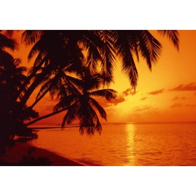 Fotomural TROPICAL SUNSET 97276