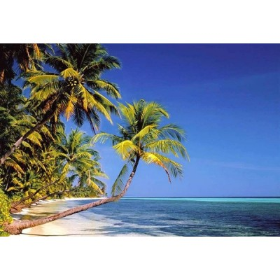 Fotomural TROPICAL BEACH 97220