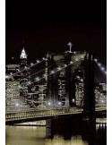 Fotomural NEW YORK AT NIGHT 97331