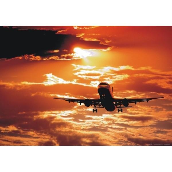 Fotomural FLIGHT